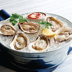 Half Shell Oysters on Ice.